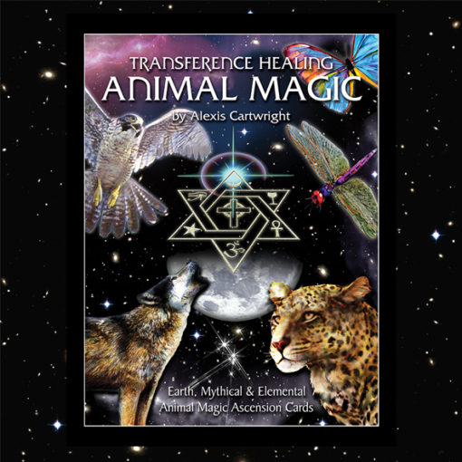 AM Book Covers for Web 510x510 - ANIMAL MAGIC DIVINATION CARDS
